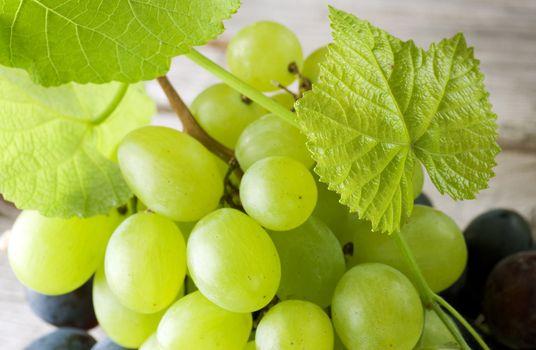 Bunch of grape closeup