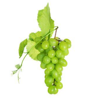 Grape Cluster Over White