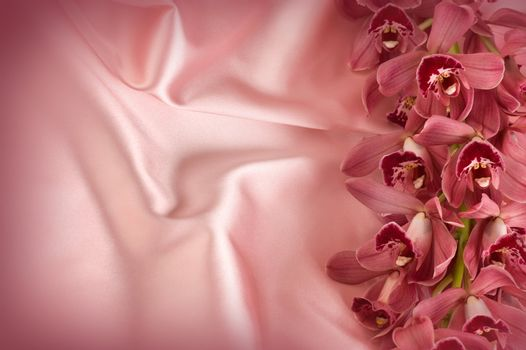 Orchid On Silk. Copy Space
