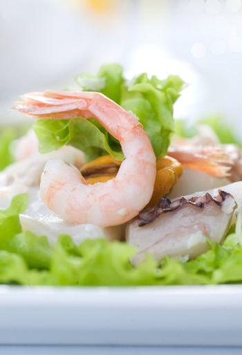 Healthy Seafood Salad with shrimps, octopus and mussels