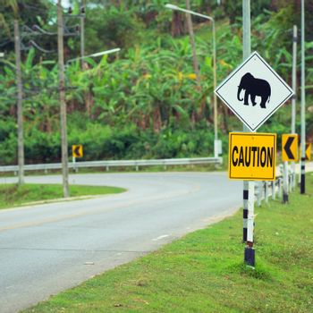 Elephant road sign in Thailand