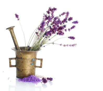 Lavender Cosmetics Concept