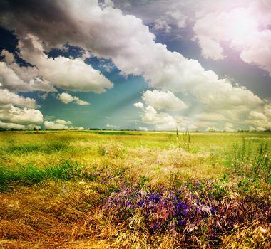 Beautiful Nature Rural Landscape