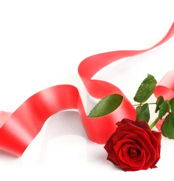 Red Rose And Ribbon