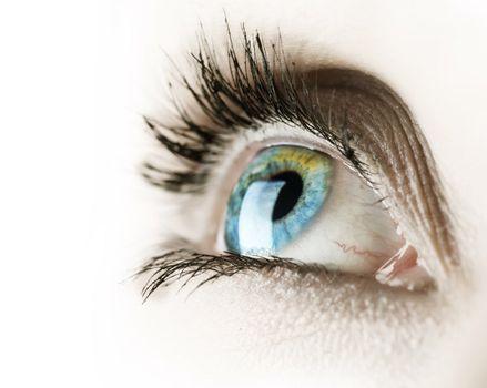 Eye Over White