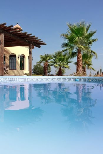 Tropical Scene with swimming pool and nice palm