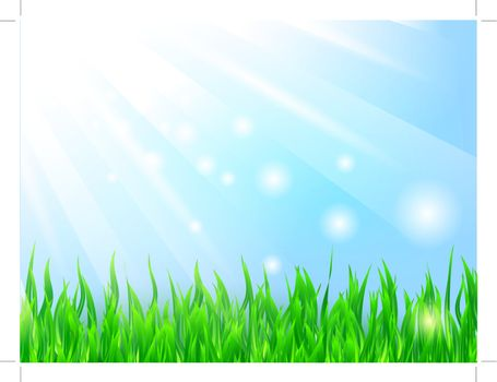 bright sun over the green grass and blue sky