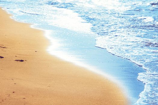 Walking on the beach, leaving footprints in the sand.