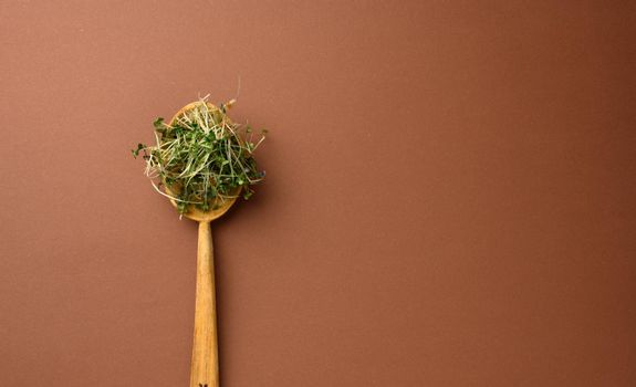 young sprouts of microgreen in a wooden spoon on a brown background, top view