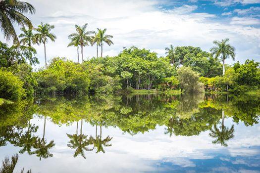 Fairchild tropical botanic garden, Miami, FL, USA