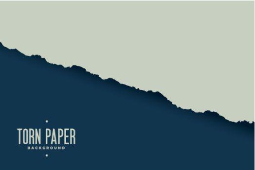 torn paper sheet edge background