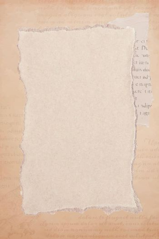 Torn old beige paper background vector