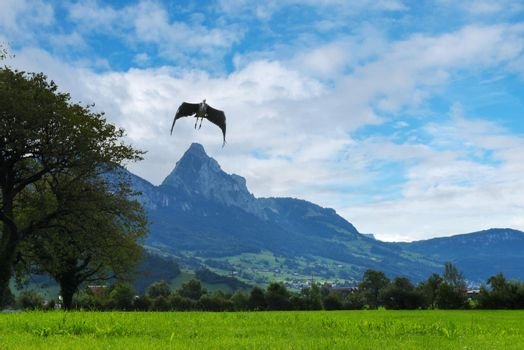 Landscape with mountains and flying bird, Switzerland Alps