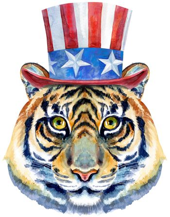 Tiger horoscope character watercolor illustration with Uncle Sam hat isolated on white background.