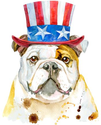 Cute dog with Uncle Sam hat on white background