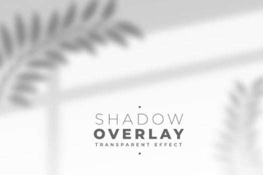 leaves and window pane shadow overlay effect