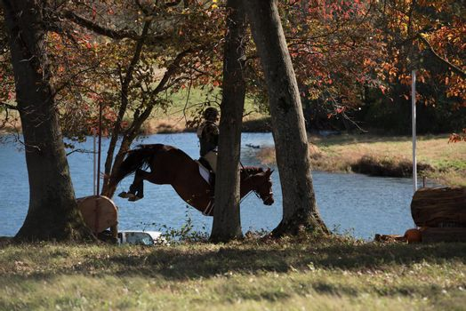 Equestrian competition photos including hunter jumper and cross country horse riders