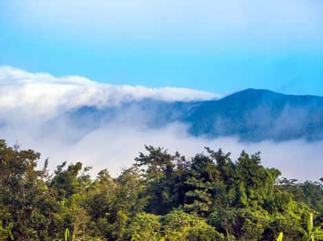 Clouds drifting over forests and mountains