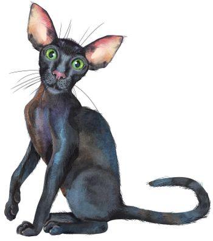 Watercolor oriental black cat. Painting animal illustration