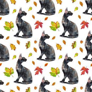Seamless pattern of oriental black cats. Painting animal illustration