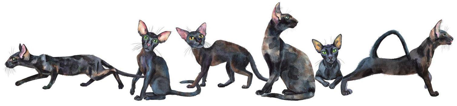 Watercolor border of oriental black cats. Painting animal illustration