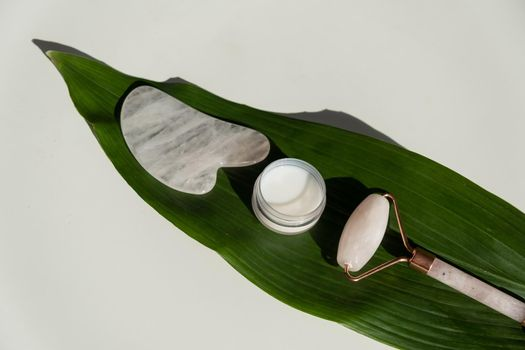 Pink gouache scraper, roller, jar of green leaf cream on a white table. Equipment for self-massage and skin care for the face and neck
