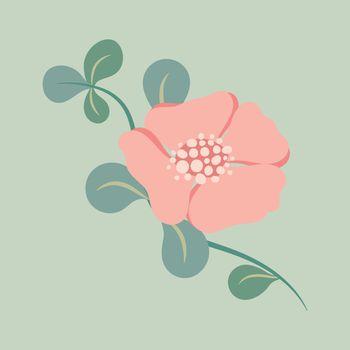 Pink flower, spring clipart vector illustration