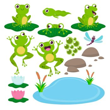 Set of cute drawing frogs