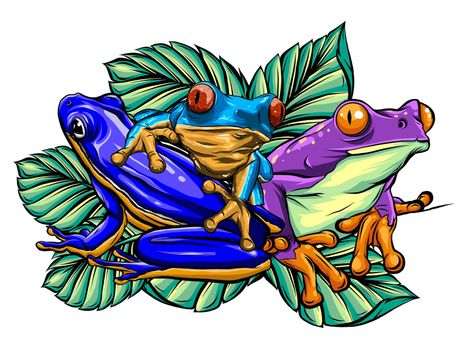 Frog cartoon tropical animal cartoon nature icon funny and isolated mascot character wild funny forest toad amphibian illustration.