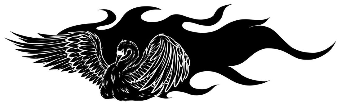 Watercolor swan. black silhouette Hand painted vector illustration design