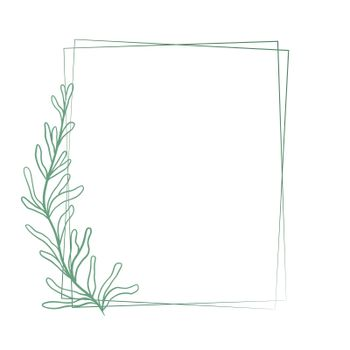 Beautiful double rectangular frame with a graceful elongated branch with sheets, vector illustration.