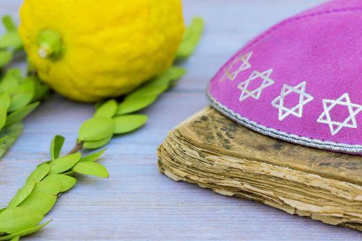 Jewish Symbols holiday of Sukkot in a synagogue