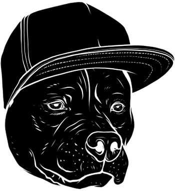 vector black and white illustration Head of dog breed pit bull in cap.