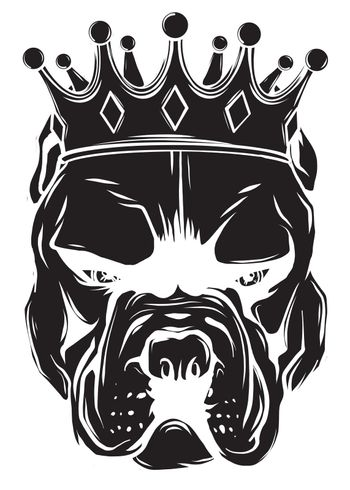Pitbull in the crown on white background. Vector illustration.
