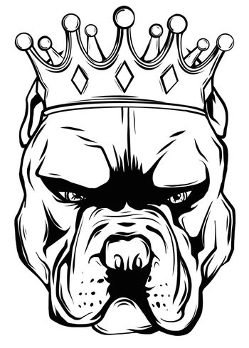 A pedigreed dog in the crown. Pitbull. Vector illustration.