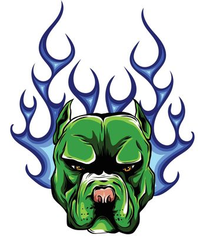head dog Pitbull vector illustration with fire