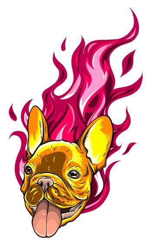 carlino head Dog Flame Tattoo vector illustration