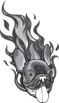 monochromatic Bull Dog Flame Tattoo in Beast Mode