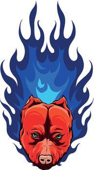 fiery head pitbull dog vector illustration design