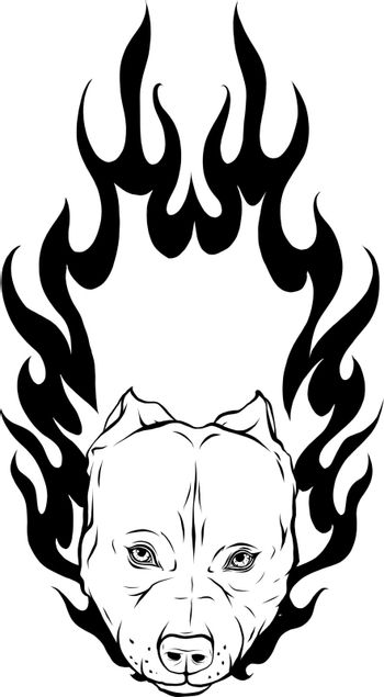 draw in black and white of head of Bull Dog with Flame vector