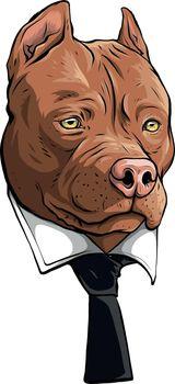 pitbull head with necktie vector illustration design