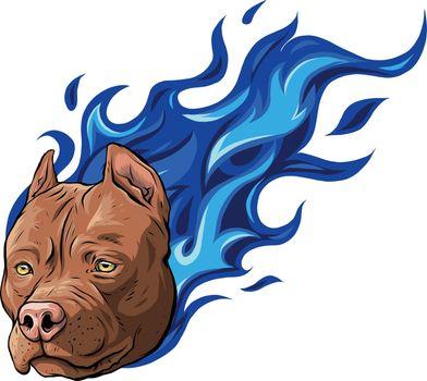 head of dog pitbull on fire vector