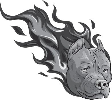 design of head of dog pitbull with flames vector