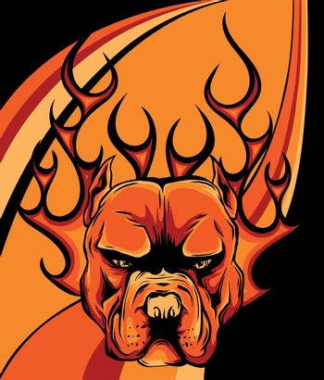 DOG FIRE PITBULL FROM HELL ARTWORK VECTOR illustration