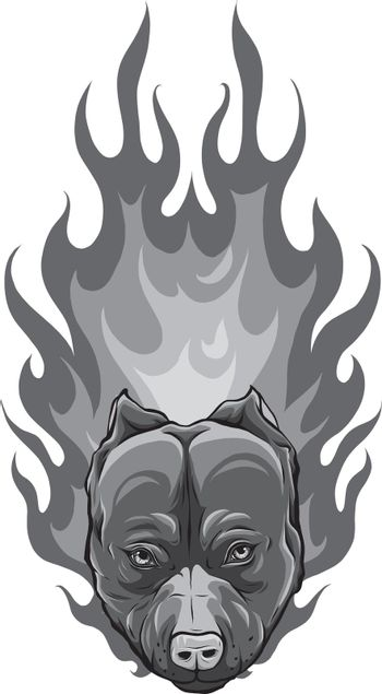 design of head of Bull Dog with Flame vector