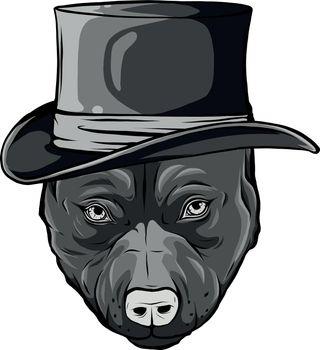 design of pitbull dog with hat vector illustration
