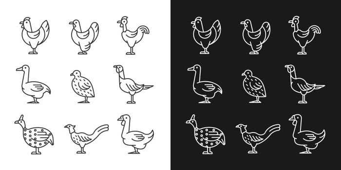 Domesticated birds linear icons set for dark and light mode