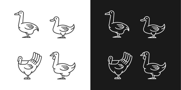 Waterfowl linear icons set for dark and light mode