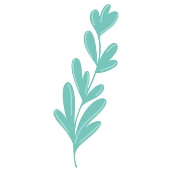 Graceful twig with elongated leaves drawn isolated botanical element.