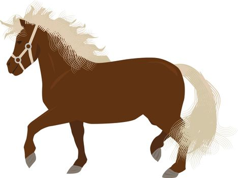Mini horse or pony with long tail and mane